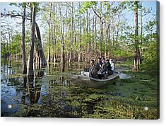 Swamp Tour Acrylic Print by Jim West