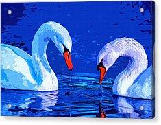Swan Bond Acrylic Print by Brian Stevens