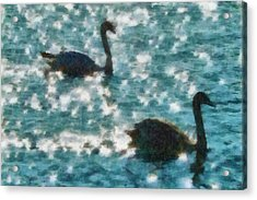 Swan Lake Acrylic Print by Ayse Deniz