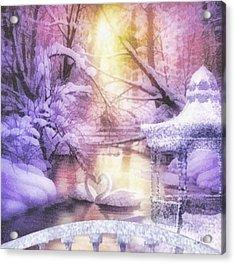 Swan Lake Acrylic Print by Mo T