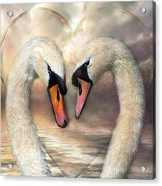 Swan Love Acrylic Print by Carol Cavalaris