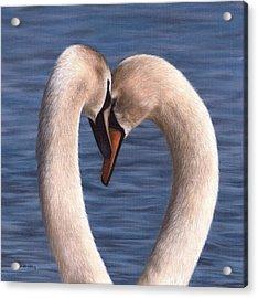 Swans Painting Acrylic Print by Rachel Stribbling