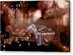 Sweet Dreams Acrylic Print by Shanina Conway
