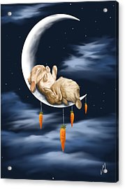 Sweet Dreams Acrylic Print by Veronica Minozzi