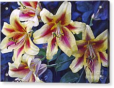 Sweet Summer Time  Acrylic Print by Juls Adams