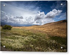Swept Away Acrylic Print by Peter Tellone