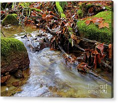 Swept Away Acrylic Print by Sharon Talson