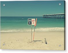 Swim And Surf Acrylic Print by Laurie Search