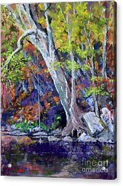 Swimming Hole Acrylic Print by Bruce Schrader