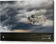 Swordfish  Acrylic Print by J Biggadike