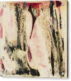 Sx Landscape V  C1978 Acrylic Print by Paul Ashby