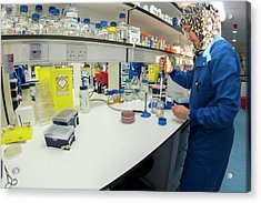 Synthetic Biology Lab Acrylic Print by Louise Murray