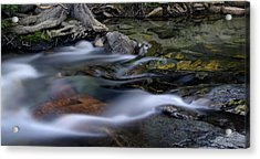 Tahoe Eagle River Acrylic Print by Dave Dilli