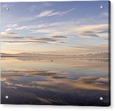 Tahoe March Morning Larry Darnell Acrylic Print by Larry Darnell