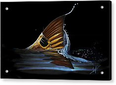 Tailing Redfish Acrylic Print by Nick Laferriere