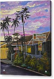 Take Home Maui Acrylic Print by Darice Machel McGuire