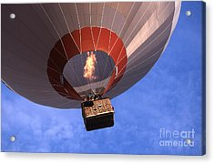 Take Off Acrylic Print by Heiko Koehrer-Wagner