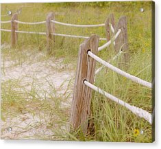 Take The Gentle Path Acrylic Print by Kim Hojnacki
