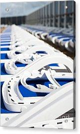 Take Your Pick Acrylic Print by Anne Gilbert