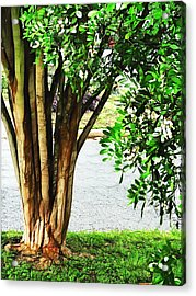 Tales From My Secret Garden Acrylic Print by Wendy J St Christopher