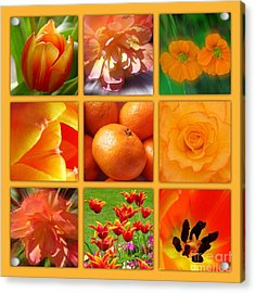 Tangerine Dream Window Acrylic Print by Joan-Violet Stretch