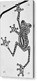 Tattooed Tree Frog - Zentangle Acrylic Print by Jani Freimann