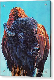 TED Acrylic Print by Patricia A Griffin