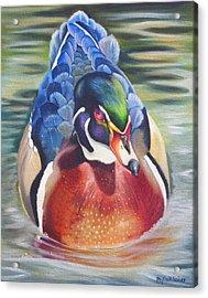 Telling Acrylic Print by Phyllis Beiser