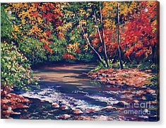Tennessee Stream In The Fall Acrylic Print by John Clark