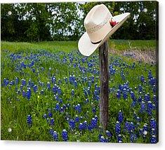 Texas Acrylic Print by Mark Alder