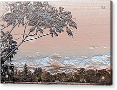 Textured Summer Acrylic Print by Barbara  White