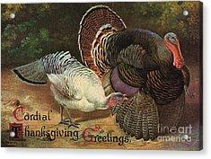 Thanksgiving Greetings Acrylic Print by American School