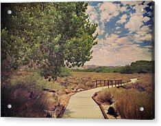 That Helping Hand Acrylic Print by Laurie Search