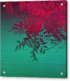 That Tropical Feeling Acrylic Print by Ann Powell