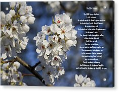 The 23rd Psalms Acrylic Print by Kathy Clark