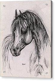 The Arabian Horse With Thick Mane Acrylic Print by Angel  Tarantella