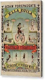 The Australian Funambulist. Acrylic Print by British Library