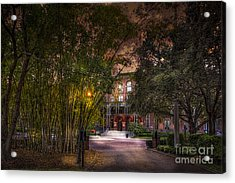 The Bamboo Path Acrylic Print by Marvin Spates