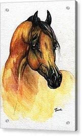 The Bay Arabian Horse 14 Acrylic Print by Angel  Tarantella