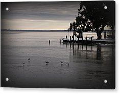 The Bay Is Frozen Acrylic Print by Carolyn Ricks