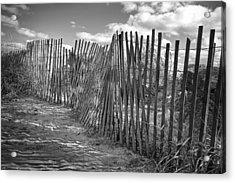 The Beach Fence Acrylic Print by Scott Norris