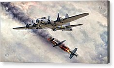 The Belle In Action Acrylic Print by Peter Chilelli