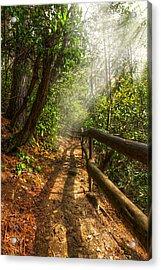 The Benton Trail Acrylic Print by Debra and Dave Vanderlaan