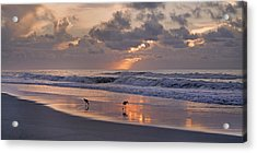 The Best Kept Secret Acrylic Print by Betsy Knapp