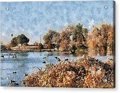 The Birds Of White Rock Lake Acrylic Print by Lorri Crossno