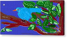 The Blue Bird Acrylic Print by Sherry  Hatcher