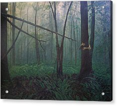 The Blue-green Forest Acrylic Print by Derek Van Derven