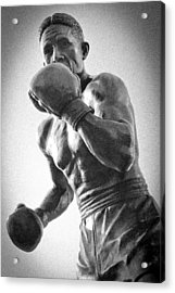 The Boxer Acrylic Print by Bob Caddick