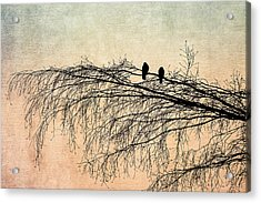 The Branch Of Reconciliation 2 Acrylic Print by Alexander Senin