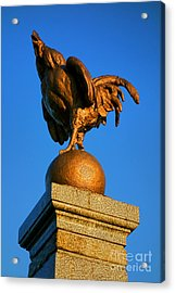 The Bronze Rooster Acrylic Print by Olivier Le Queinec